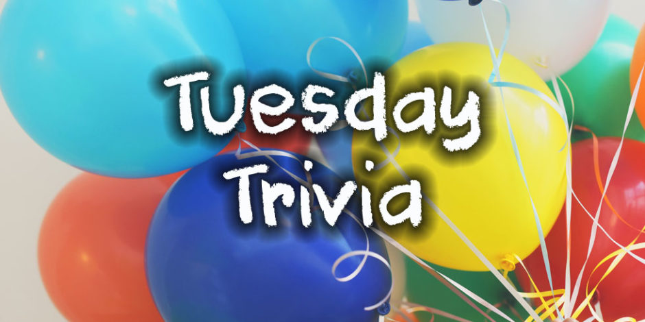 Tuesday Trivia at quizagogo - Photo by Gaelle Marcel on Unsplash