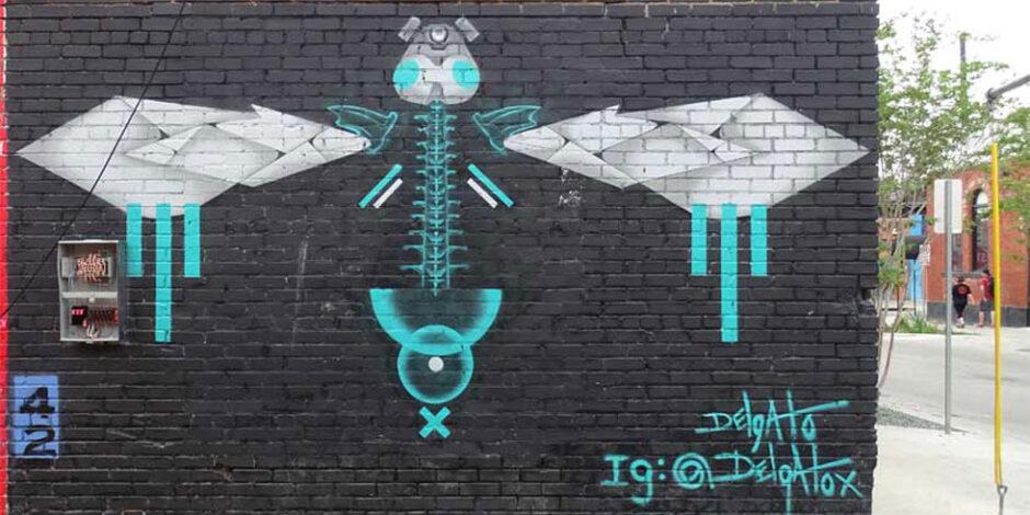 Joey Delgado - Insekta